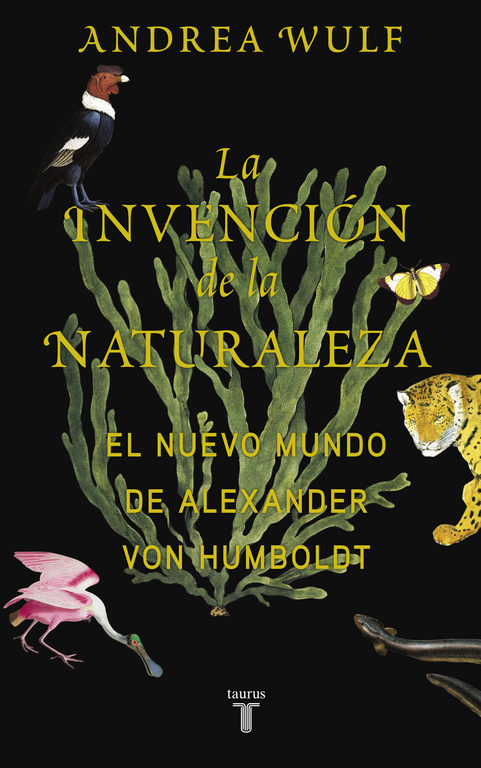 https://laantiguabiblos.blogspot.com.es/2017/02/la-invencion-de-la-naturaleza-andrea.html