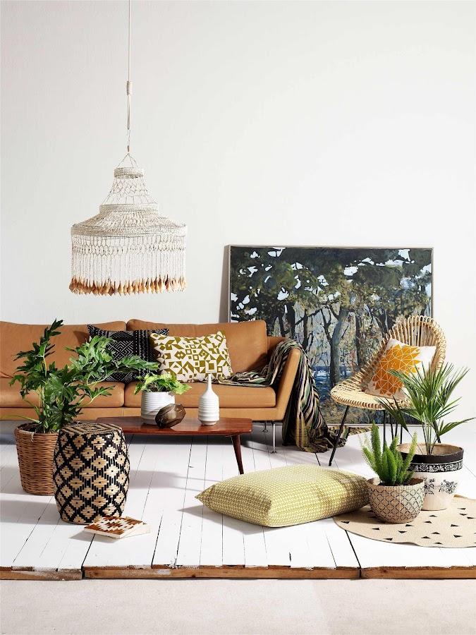 Son muchos y variados los motivos por los qe debemos tener plantas en nuestra casa