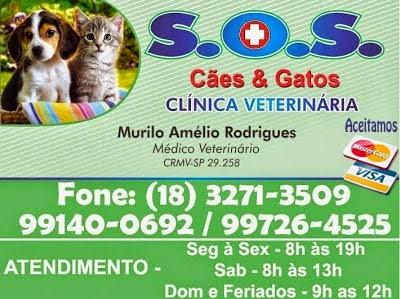 S.O.S CÃES E GATOS