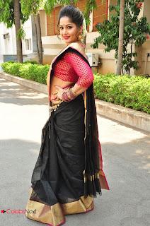 Madhavi Latha Stills in Saree at Anushtanam Movie Audio Launch ~ Celebs Next