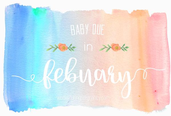 November Baby 2021