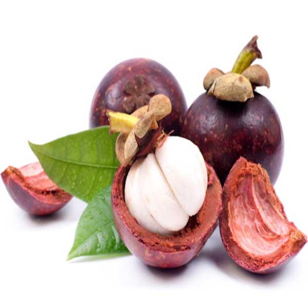 manggis, manfaat manggis, manfaat buah manggis, khasiat manggis, khasiat buah manggis