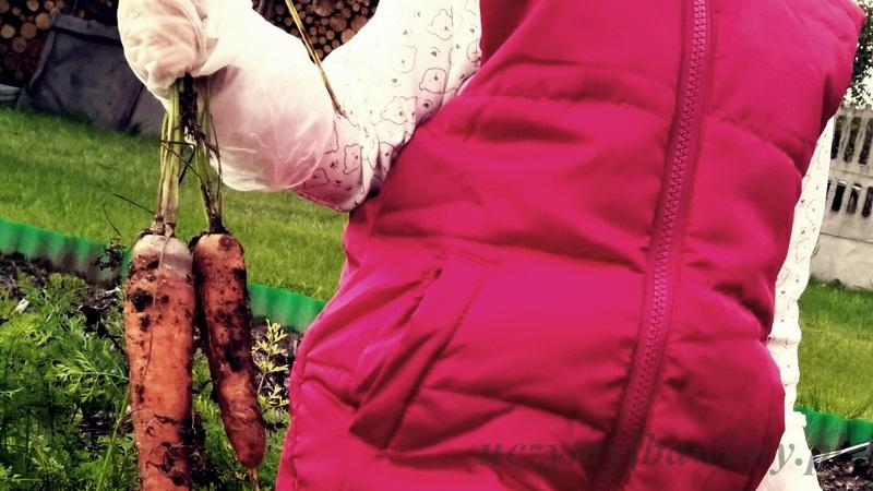 montessori - w ogródku