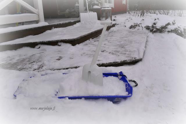 Fiskars Snowxpert Autolapio