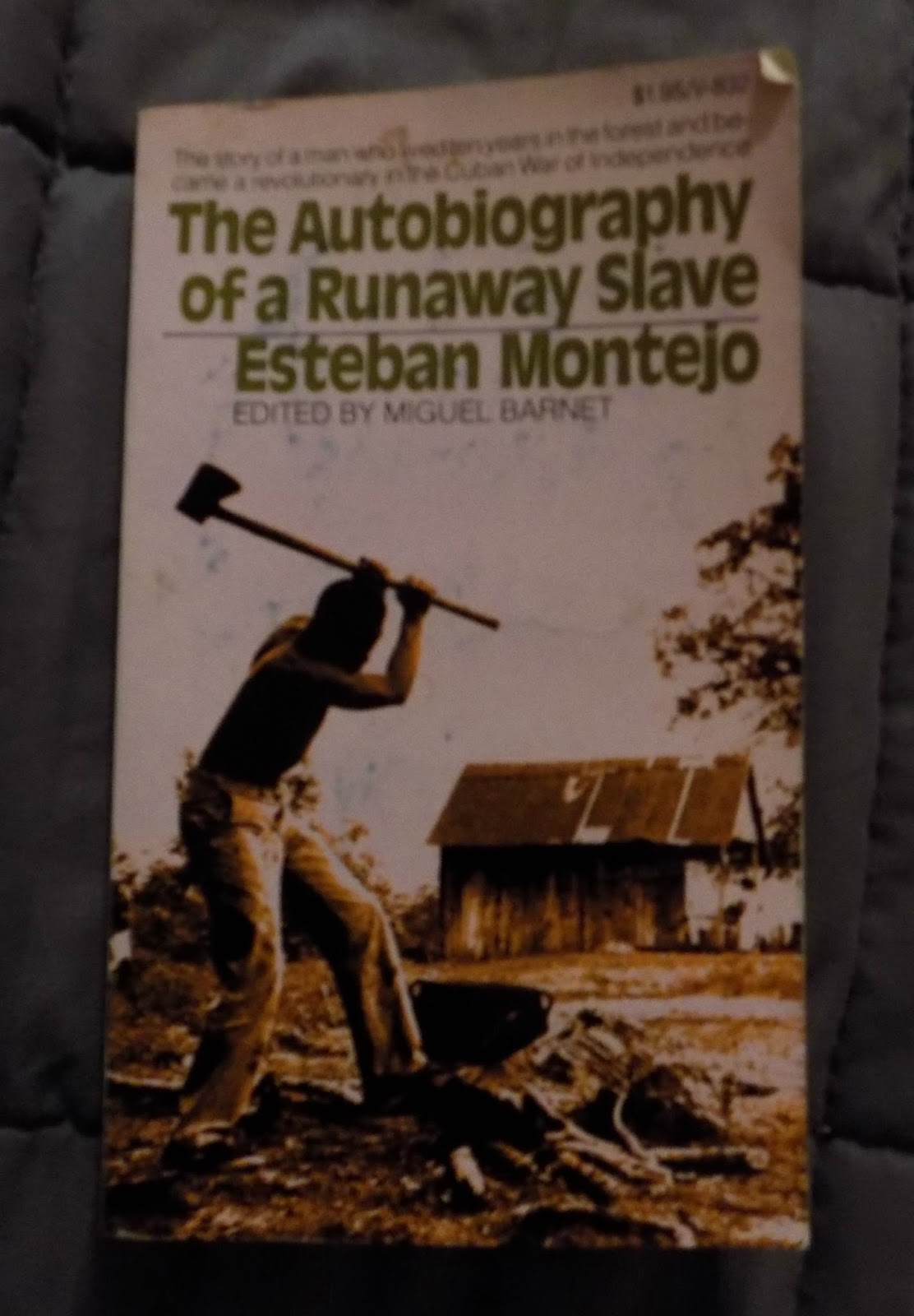 the autobiography of a slave