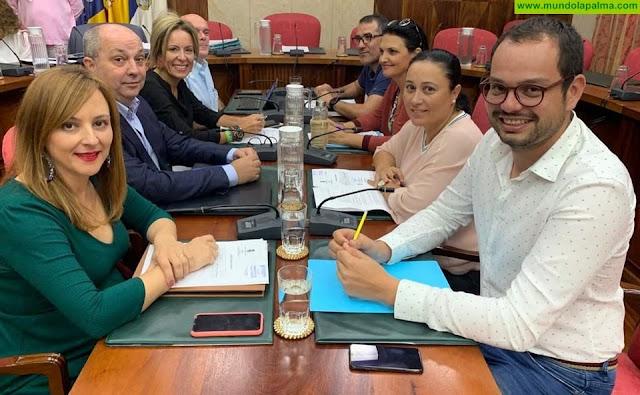"""Coalición Canaria en el Cabildo: """"Es vital poner en marcha ya las ayudas para pymes y autónomos de la Isla"""""""