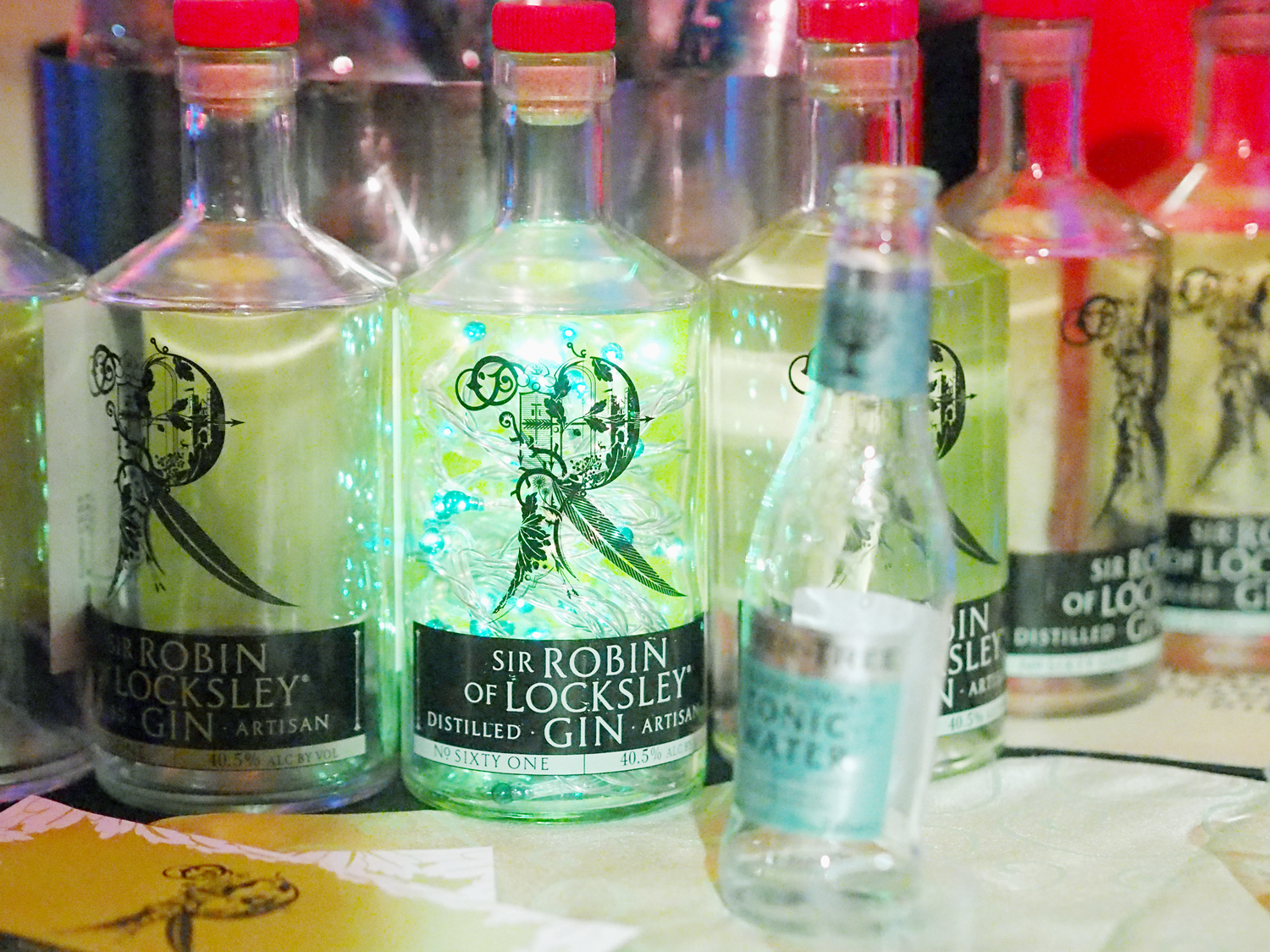 The Gin Festival Leicester