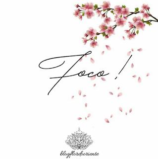 Foco, fé, força, blog flor do oriente, pessoal, pensamentos, 2019, metas, objetivos, sonhos, persistencia,ter foco