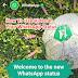 WhatsApp Status Mai Image Or Video Ko Kaise Lagaye or Use kare