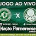Assistir AO VIVO! Chapecoense x Palmeiras   20/05/2017