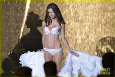Adriana Lima Victoria Secret Model HD wallpaper 003,Adriana Lima HD Wallpaper