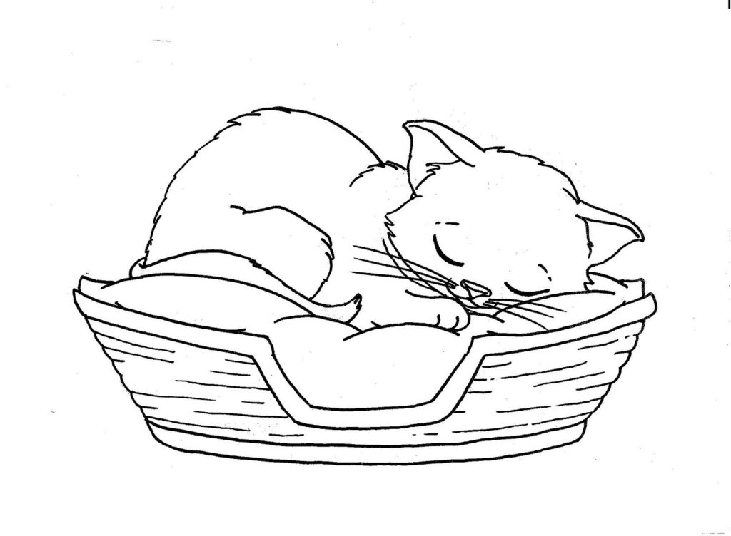 Sleep Cat Coloring Pages ~ Best Coloring Pages For Kids
