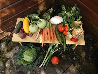 bio vegan gemüse