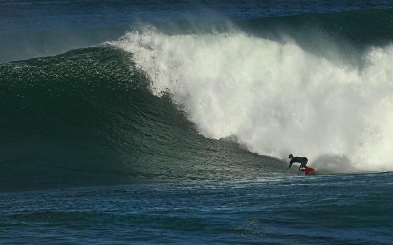 surfista ballena 02