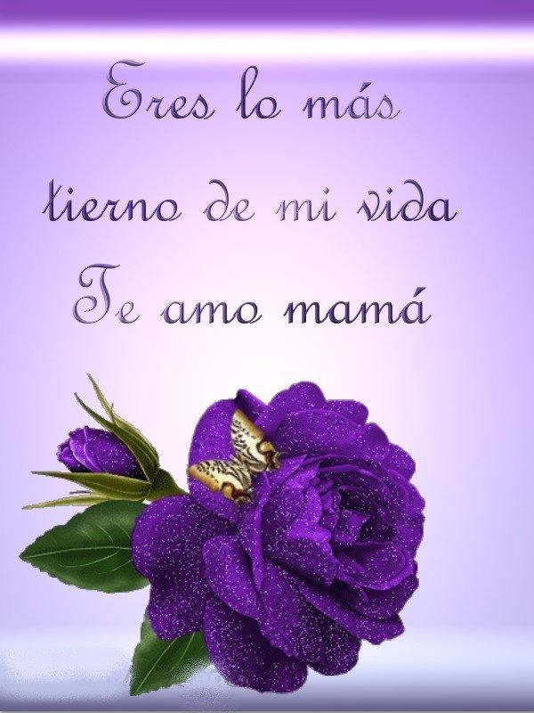 Feliz Dia de la Madre - 5 de Mayo