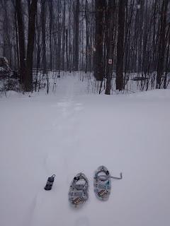 L'Escapade, sentier du mont Rigaud, l'hiver, neige, raquettes