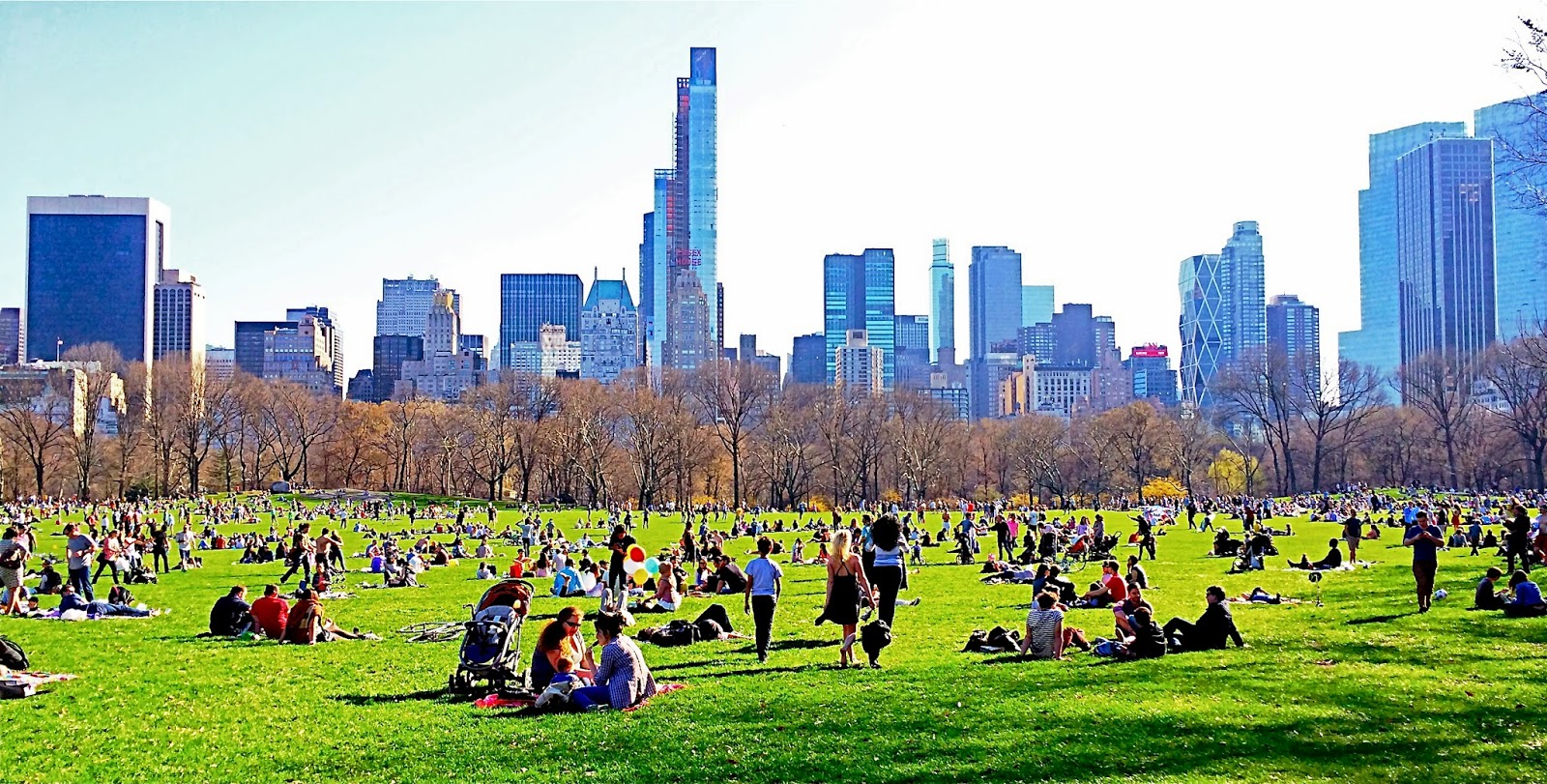 Image result for Sheep Meadow