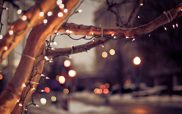 City Winter Tree Lights Christmas Wallpaper