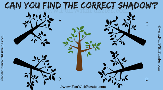 In this Clever Picture Puzzle for Students one has to find the correct shadow of the given puzzle image