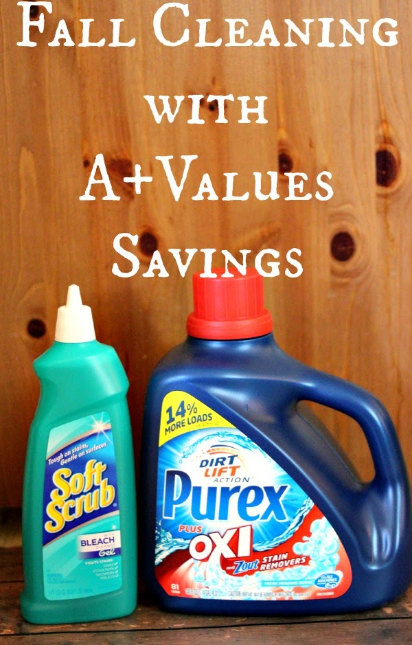 Fall Cleaning with A+ Values #APlusValues #Shop