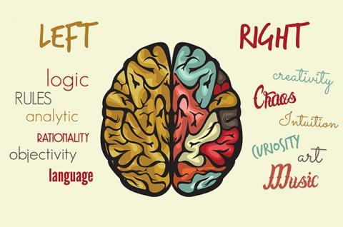 Otak Mana Yang Lebih Dominan
