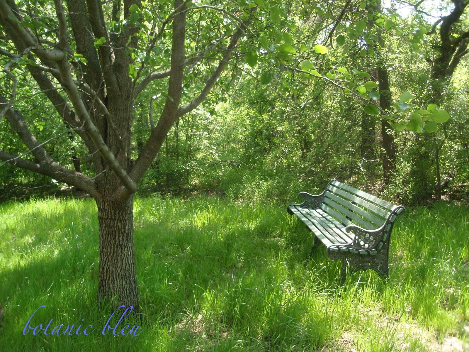 Botanic Bleu Vintage Park Bench