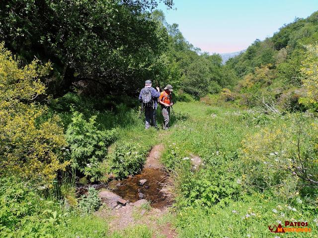 Vadeamos el río La Verde