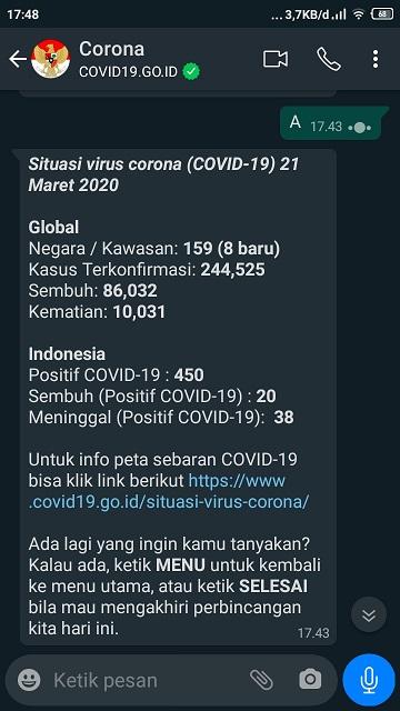 Chat bot corona Indonesia