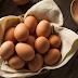 أسعار بيض الدواجن لشهر ديسمبر 2017