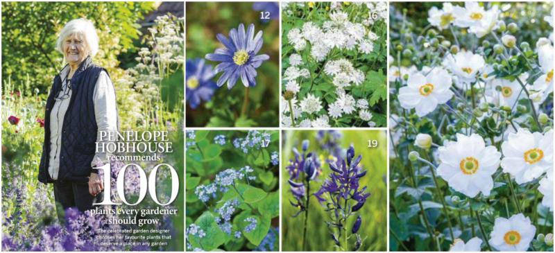 Las 100 plantas favoritas de Penelope Hobhouse, experta diseñadora de jardines británica