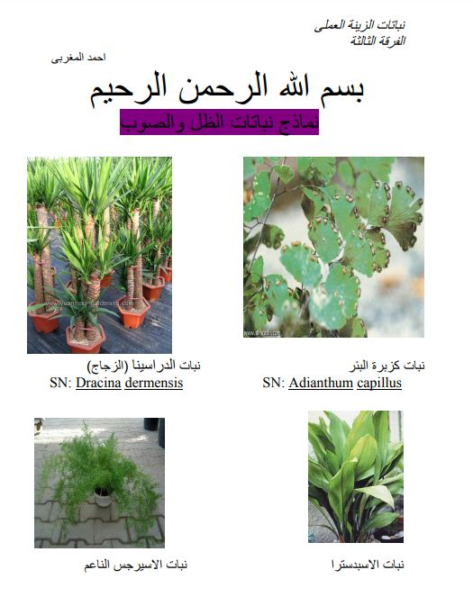 تحميل كتاب نباتات زينة pdf