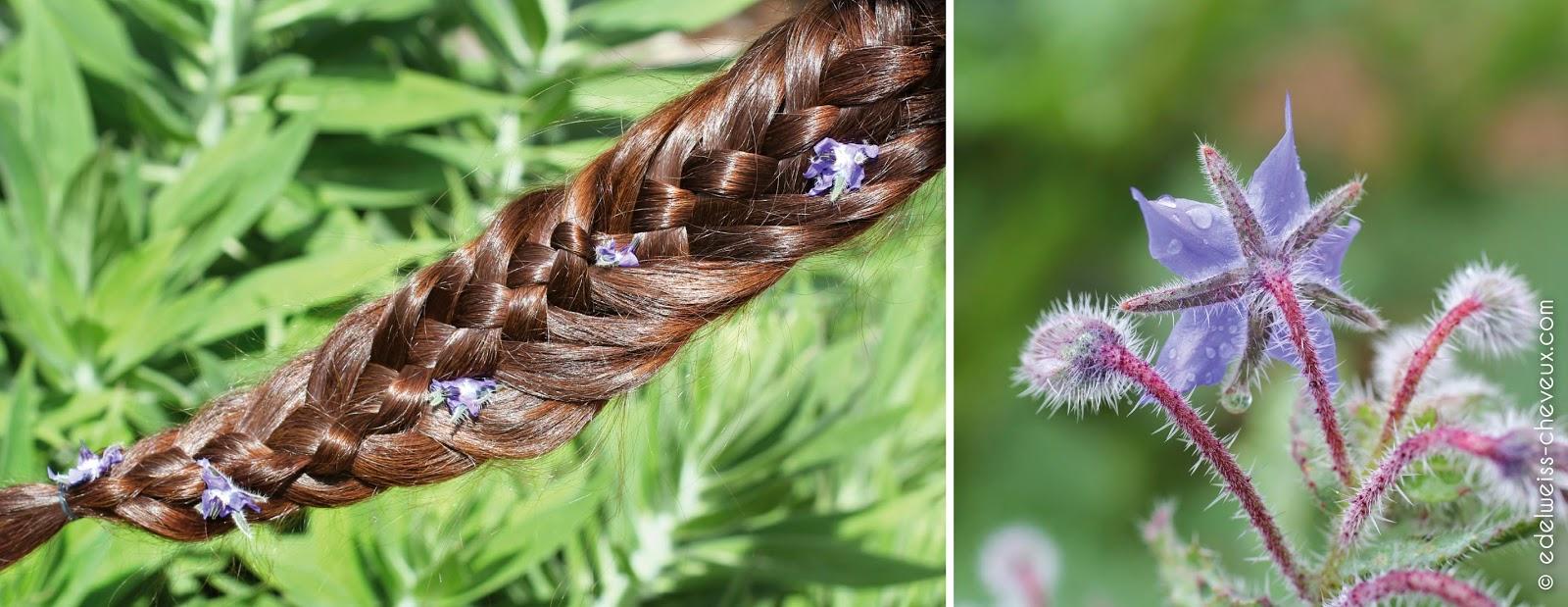 berthe guilhem soin naturel artisanal cheveux brillance tresse
