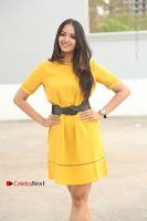 Actress Poojitha Stills in Yellow Short Dress at Darshakudu Movie Teaser Launch .COM 0016.JPG