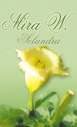 Download eBook Solandra - Mira W.