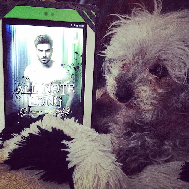 Murchie curls himself around a white Kobo propped upright. His paws a crossed demurely in front of him. The Kobo's screen holds the cover of All Note Long, featuring a dark-haired, bearded white man wearing a white t-shirt. He stands against a sideways ombre background that fades from blue on the left to green on the right. Music notes swirl around him.