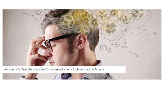 Ayudas a la Transferencia de Conocimiento de la Universidad de Murcia.
