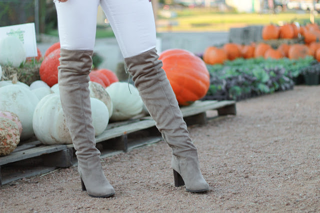 over the knee boots in pumpkin patch