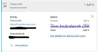 Pembayaran dari Toluna (Survey Online)