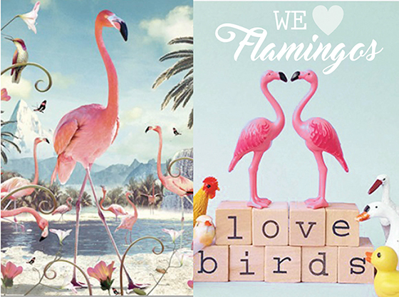 http://www.shabby-style.de/flamingo?limit=30