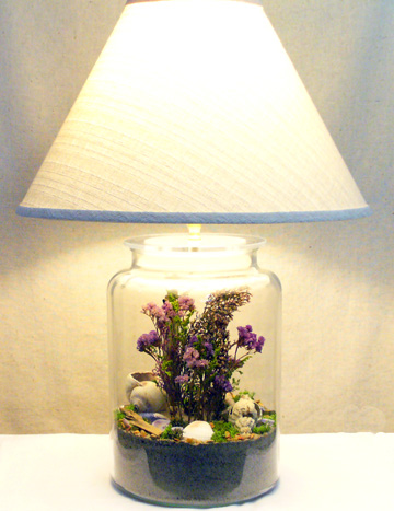 AJORBAHMAN'S COLLECTION: Make a Lamp with Shells ...