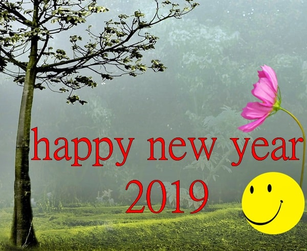 new year wishes photos, happy new year quotes, happy new year images hd, qoutes of new year, new year status, new year wishes messages