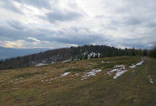 Widok na zalesiony Jasień z Kutrzycy.