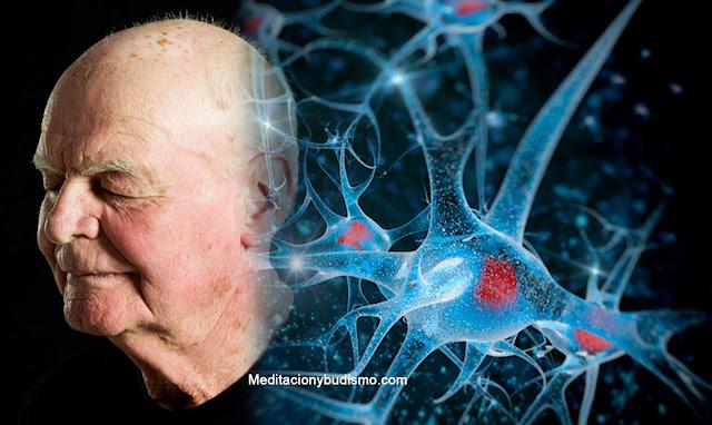 Hábitos que te envejecen mental y físicamente