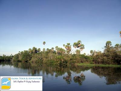 Kali Biru Sungai Way Kanan Taman Nasional Way kambas