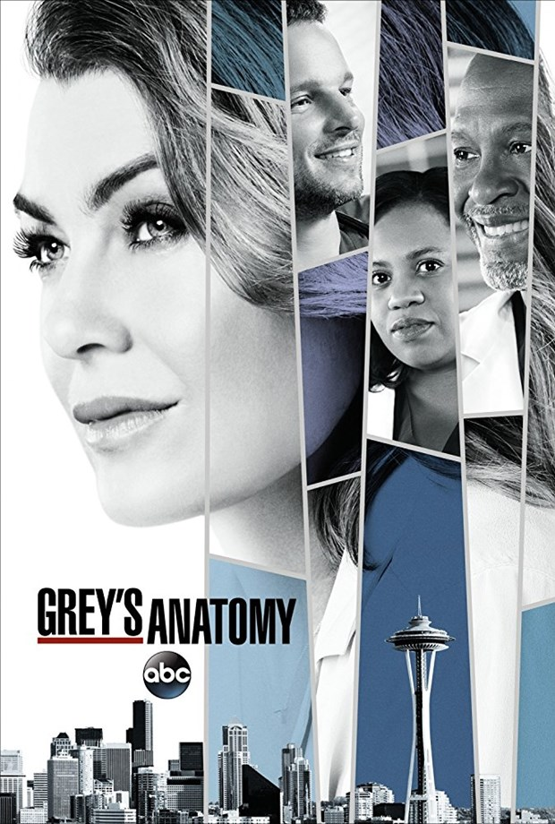 Greys Anatomy 2017: Season 14 - Full (2/23)
