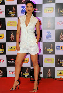 Sexy Gauhar Khan Legs Exposing On An Event