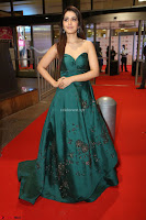 Raashi Khanna in Dark Green Sleeveless Strapless Deep neck Gown at 64th Jio Filmfare Awards South ~  Exclusive 147.JPG