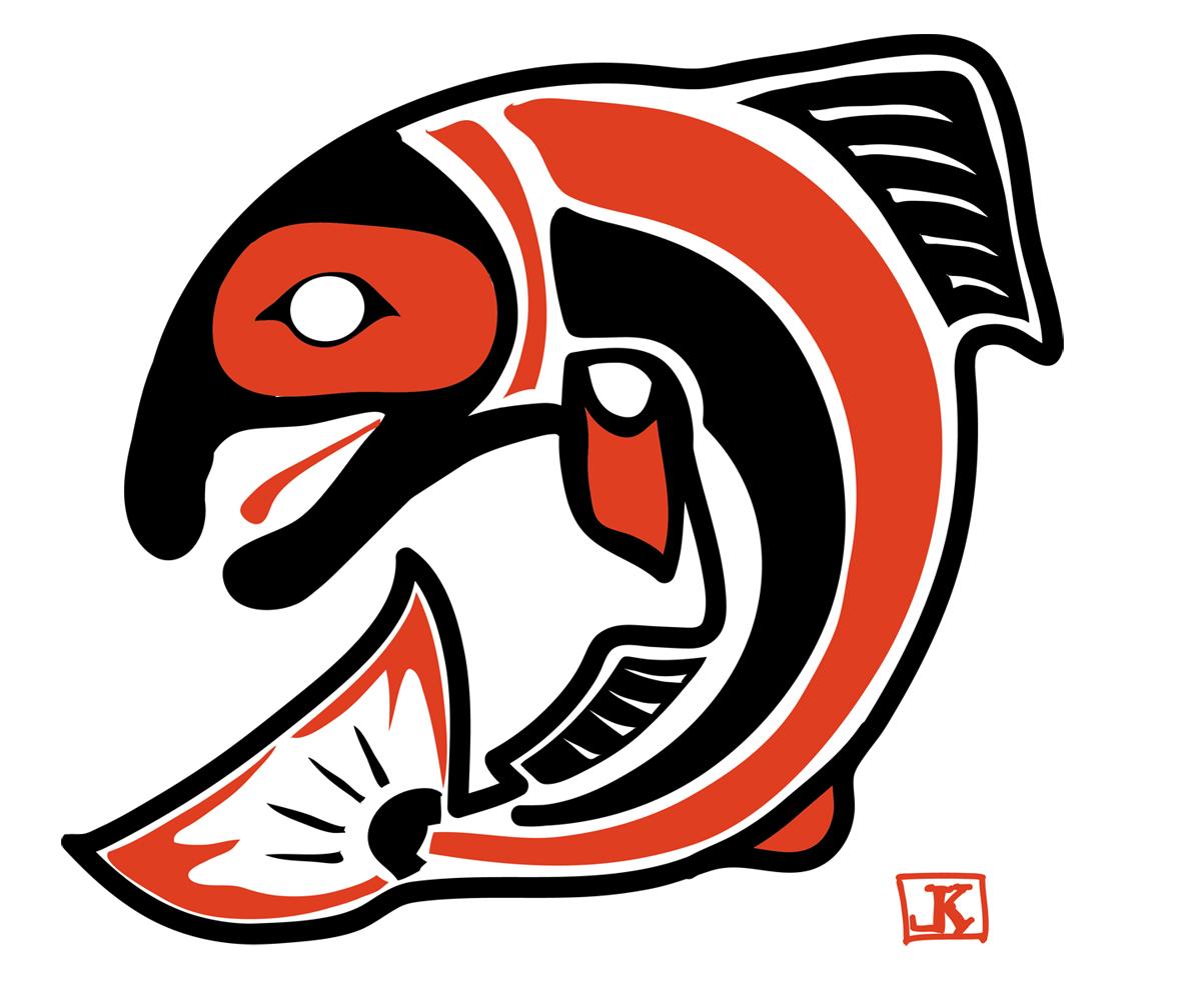 Drawing Flies 365 Drawing Fish 52 18 Coho Salmon