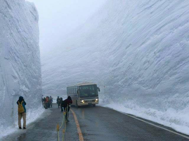 The force of Nature, Look What can do the snow - Japan