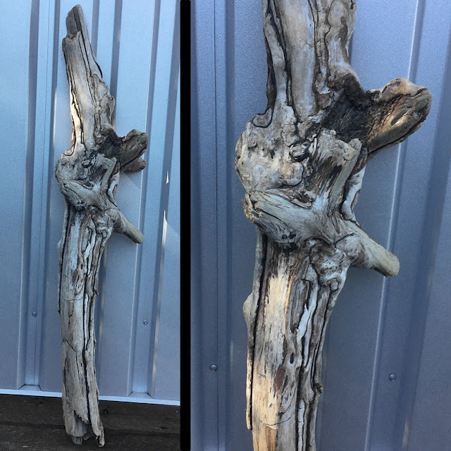 Interesting driftwood found near Gibsons, BC; soon to be a Coast Chimes Wind Chime